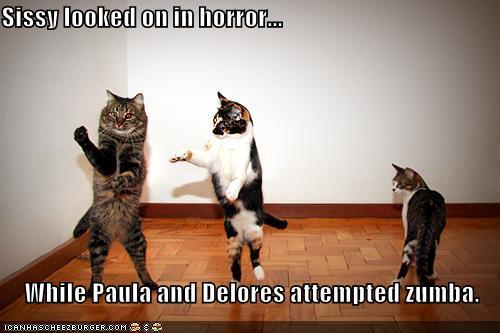 Funny Memes Zumba : Humour zumba with rocio